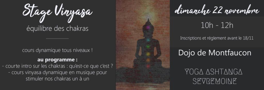 Retrouvez-moi au sein de l'association Yoga AshtangaSèvremoine pour un stage Vinyasa axé sur les chakras ! Lors du stage, je vous expliquerai ce qui se cache derrière ce mot chakra, puis nous pratiquerons un vinyasa dynamique en musique !